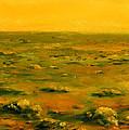 Martian Desert Landscape Art  by Lenora  De Lude