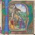 Martini Francesco Di Giorgio, Nativity by Everett