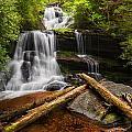 Martins Creek Falls by Alex Mironyuk