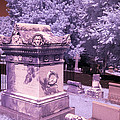 Mary And John Tyler Memorial Near Infrared Lavender And Pink by Sally Rockefeller