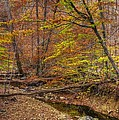 Maryland Country Roads - Autumn Colorfest No. 7 - Catoctin Mountains Frederick County Md by Michael Mazaika