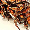 Maryland Crabs by Ginger Wakem