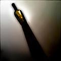 Mas Chardonnay by Doug Heslep