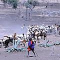 Masai Herder Boy by Tom Wurl