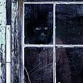 Masked Man Looking Out Window by Jill Battaglia