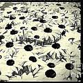 Mass by Jean OKeeffe Macro Abundance Art