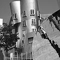 Massachusetts Institute Of Technology Stata Center by University Icons