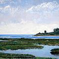 Massachussetts Marsh Morning by Lorraine McFarland