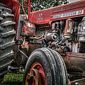 Massey Ferguson Antique Tractor by Bill Wakeley