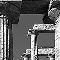 Massive Columns Of Paestum by Prints of Italy