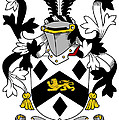 Massy Coat Of Arms Irish by Heraldry