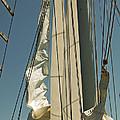 Mast Stepping by Jani Freimann
