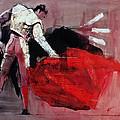Matador by Mark Adlington