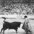 Matador Silverio Perez by Underwood Archives