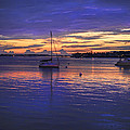 Matanzas Bay Sunrise by Stacey Sather