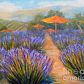 Matanzas Winery by Carolyn Jarvis