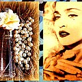 Material Girl by The Creative Minds Art and Photography