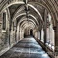 Mathey College Hall by Louise Reeves