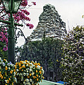 Matterhorn Mountain With Flowers At Disneyland by Thomas Woolworth
