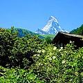 Matterhorn With Mountain Chalet by Scott Carda