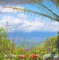 Maui Botanical Garden by Peggy Hughes