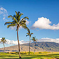 Maui Hawaii by Pierre Leclerc Photography