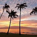 Maui Sunrise by David Olsen