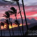 Maui Sunset by Peggy Hughes