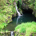 Maui Waterfall 1 by Catherine Rogers