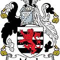 Maule Coat Of Arms Irish by Heraldry
