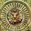 Mausoleum Lion by Chris Thaxter