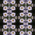 Mauve Beauty Pattern by Nicki Bennett