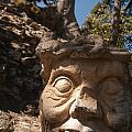 Maya by Tyler Lucas