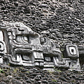 Mayan Hieroglyphics by Jim Goodman