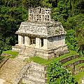 Mayan Temple by Jess Kraft