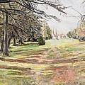 Maymont Landscape by Chris Grocholski