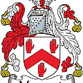 Maynard Coat Of Arms Irish by Heraldry