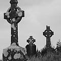Mayo graves 2