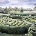 Maze by Ariel Luke