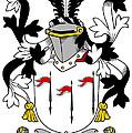 Mcalindem Coat Of Arms Irish by Heraldry