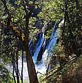 Mcarthur-burney Falls Side View by Debra Thompson