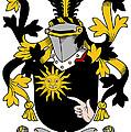 Mcbrady Coat Of Arms Irish by Heraldry