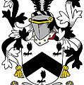 Mcbray Coat Of Arms Irish by Heraldry