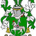 Mccaffrey Coat Of Arms Irish by Heraldry