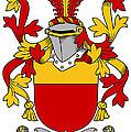 Mccarron Coat Of Arms Irish by Heraldry