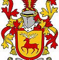 Mccartney Coat Of Arms Irish by Heraldry
