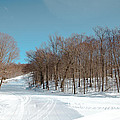 Mccauley Mountain Ski Area Vii- Old Forge New York by David Patterson