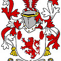 Mccawley Coat Of Arms Irish by Heraldry