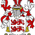 Mcclancy Coat Of Arms Irish by Heraldry