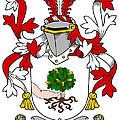 Mccluskie Coat Of Arms Irish by Heraldry